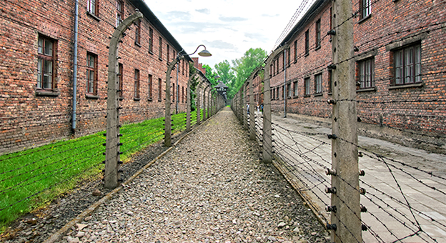 Auschwitz Tour from Krakow-/images/tour/tour_001/04_medium.jpg