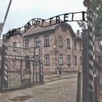 Flights to Auschwitz
