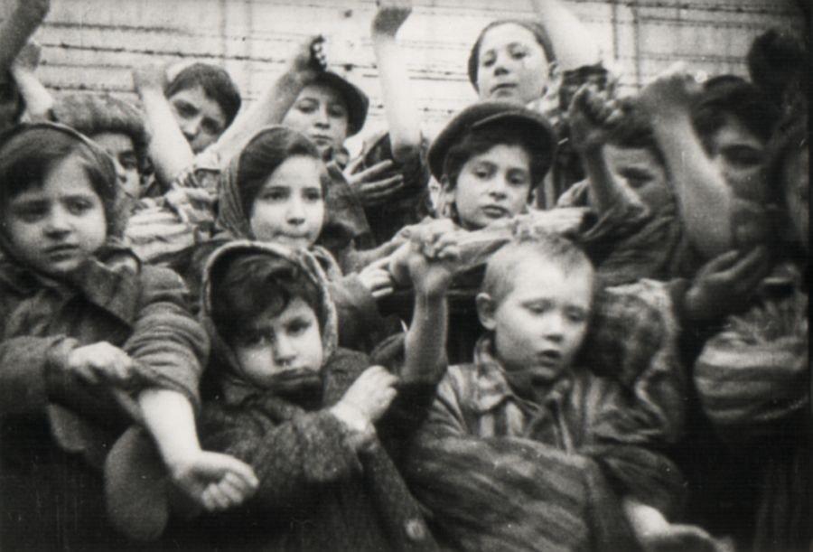 auschwitz children