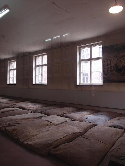Auschwitz living conditions
