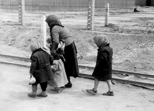 auschwitz children