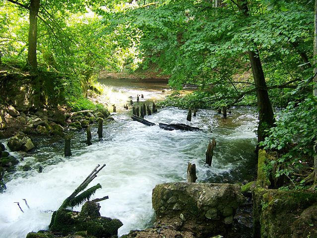 Drawa National Park
