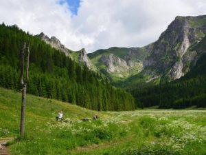 tatra-hike-view