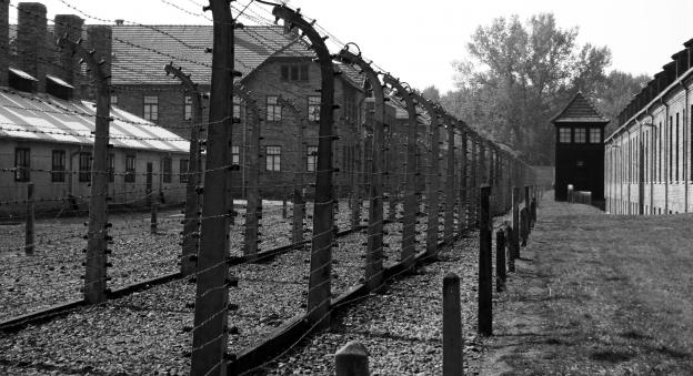 Best Way To See Auschwitz Tour Or No Tour