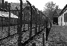 Auschwitz Tour from Warsaw-/upload/57a331e4862a3.jpeg