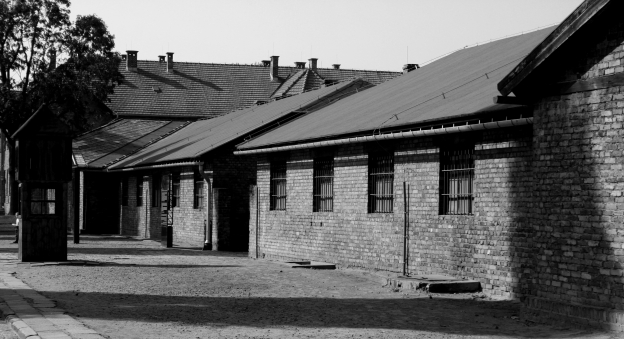 Auschwitz Tour from Warsaw-/upload/57a331fa335f1.jpeg