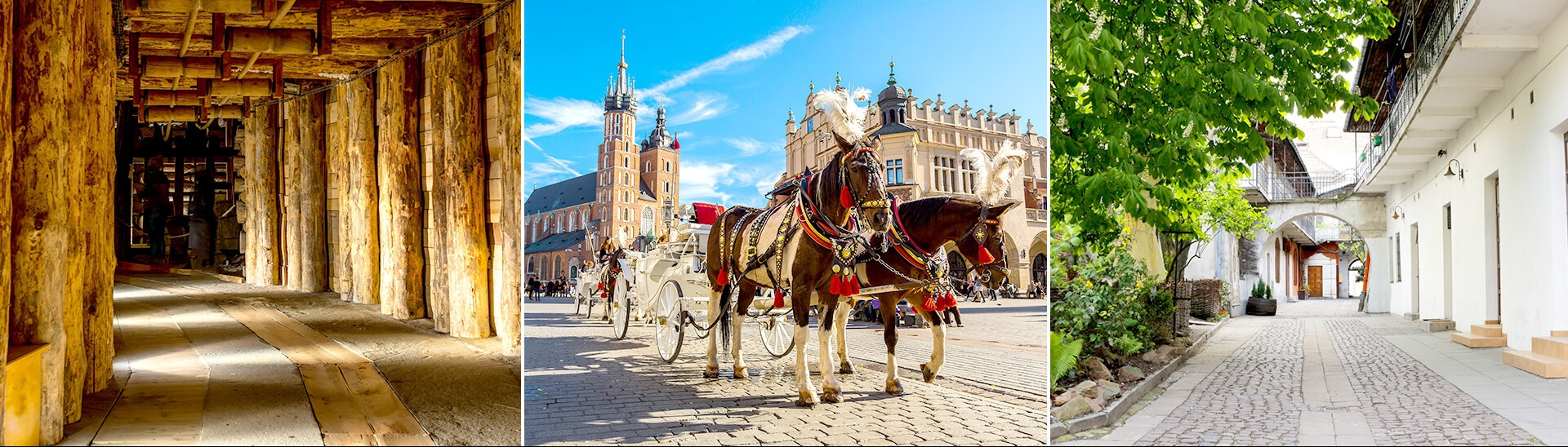 Package tours to Krakow - private guided tour with transport and hotel in Krakow