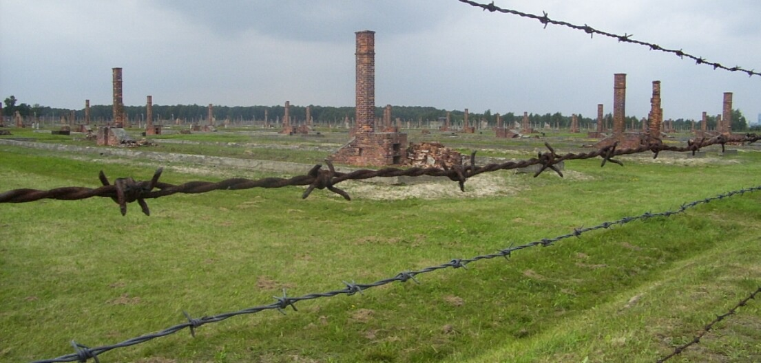 Auschwitz Package - ruins-of-barracks-5b041de2bd11d